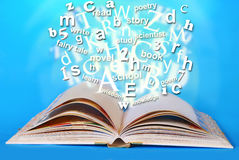 Opened book of wisdom Stock Images