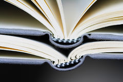 Opened books. Macro two the same opened books Royalty Free Stock Photography