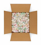 Opened Box with Packing Fill Royalty Free Stock Photography