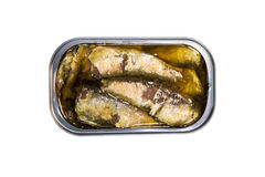 Opened can with sardines fish isolated with clipping path Royalty Free Stock Photography