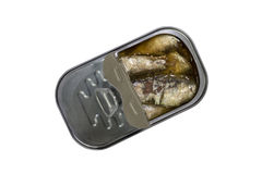 Opened can with sardines fish isolated with clipping path Stock Images