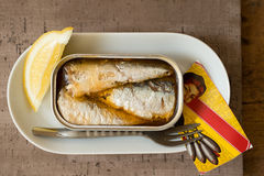 Opened Can of Sardines in Oval Dinner Plate Stock Photos