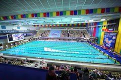 Opened championship of Russia on swimming Royalty Free Stock Photo