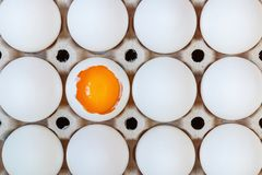 Opened chicken egg with yolk among whole eggs in cardboard tray closeup. Top view Royalty Free Stock Images