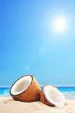 An opened coconut by the ocean on a sunny day Stock Photos