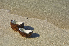 Opened coconut on the sandy beach Royalty Free Stock Photos