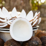 Opened coconuts on the market. Opened coconuts on a market stand Royalty Free Stock Images