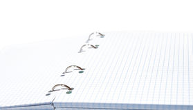 Opened copybook. With blank lined sheets Royalty Free Stock Photography