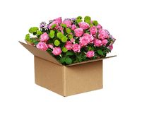 Opened craft cardboard boxwith beautiful bouquet of flowers