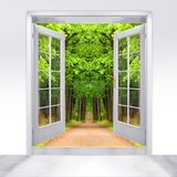 Opened door to early morning. Opened door to early morning in green oak alley  - conceptual image - business metaphor Stock Photos