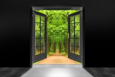 Opened door to green oak alley. Royalty Free Stock Images