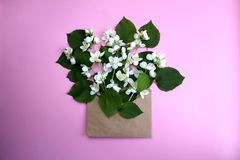 Opened envelope with flowers arrangements on pink background, top view. Festive greeting concept. Arrangement, background picture, beautiful, birthday, flower royalty free stock photography