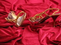 Opened feminine loafer. Royalty Free Stock Image