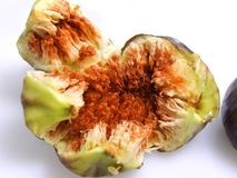 Opened Figs Stock Photography