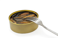 Opened fish can Stock Photography