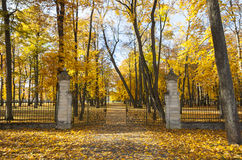 Opened gate in autumn Stock Images