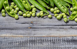 Opened green pea pods Stock Image