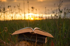 Opened hardback book diary, fanned pages on blurred nature lands. Cape backdrop, lying in summer field on green grass against sunset sky with back light. Copy royalty free stock photos