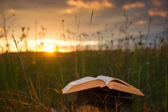 Opened hardback book diary, fanned pages on blurred nature lands. Cape backdrop, lying in summer field on green grass against sunset sky with back light. Copy stock photo