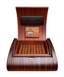 Opened humidor with cigars Royalty Free Stock Image