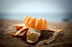 Opened the Mandarin in the sand. New year and Christmas in some exotic warm country Royalty Free Stock Photography