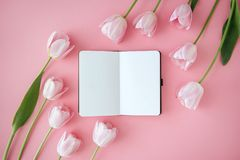 Notebook and flowers stock photos