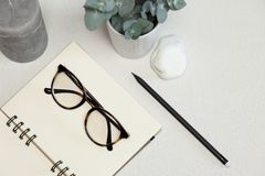 Opened notebook with black pen, green plant, stone and candle royalty free stock photo