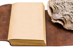 Opened old leather book isolated on white background Royalty Free Stock Image