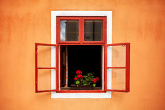 Opened old red window with flowers in orange wall Royalty Free Stock Images