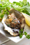 Opened oyster Royalty Free Stock Photo