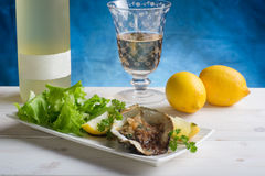 Opened oyster Royalty Free Stock Image