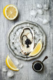 Opened oyster with black sturgeon caviar and lemon on ice in metal plate on grey concrete background. Top view, flat lay Royalty Free Stock Image