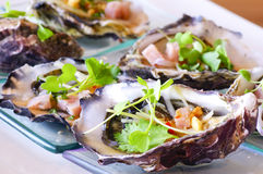 Opened oyster food Royalty Free Stock Photos