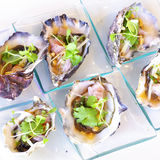 Opened oyster food on dish. Opened fresh oyster food on dish Royalty Free Stock Photography