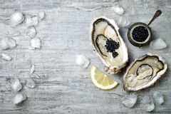 Opened oysters with black sturgeon caviar and lemon on ice in metal plate on grey concrete background. Top view, flat lay royalty free stock photo