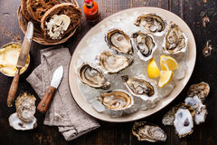 Opened Oysters and dark bread with butter Royalty Free Stock Photos