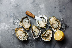 Opened Oysters Fines de Claire and lemon Royalty Free Stock Images