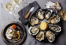 Opened Oysters Fines de Claire stock images