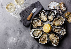 Opened Oysters Fines de Claire Stock Image
