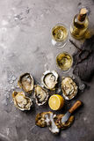 Opened Oysters Fines de Claire and white wine Royalty Free Stock Photography