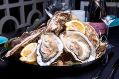 Opened Oysters on folk decorated plate. Close up in restaurant Stock Image