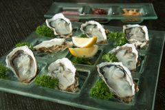 Oysters on glass plate with spicy sauce. Opened Oysters on glass plate with spicy sauce Royalty Free Stock Photos