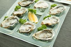 Oysters on glass plate with spicy sauce. Opened Oysters on glass plate with spicy sauce Stock Photos