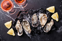 Opened Oysters with ice, lemon and rose wine. Opened Oysters on dark marble background with ice, lemon and rose wine Royalty Free Stock Photo