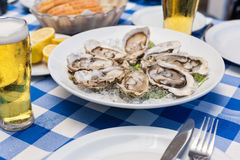 Opened oysters with ice and lemon,selective focus Royalty Free Stock Photos