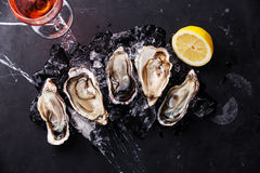 Opened Oysters with ice, lemon and wine. Opened Oysters on dark marble background with ice, lemon and rose wine Stock Photo