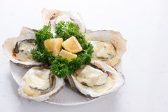 Opened oysters, ice and lemon on wooden board over stone table. Half dozen. With copy space.  Stock Image