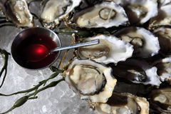 Opened oysters on ice Stock Photos