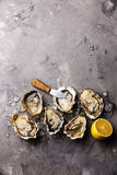 Opened Oysters and lemon Royalty Free Stock Photos