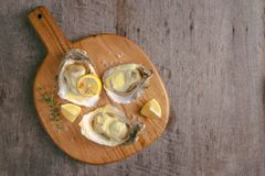 Opened oysters and lemon on wooden board. Opened oysters and lemon on wooden board Royalty Free Stock Image